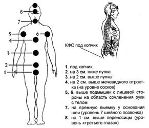 Система Чакр в Славяно-Арийской традиции