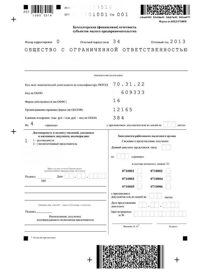 Форма бухгалтерской отчетности бланк